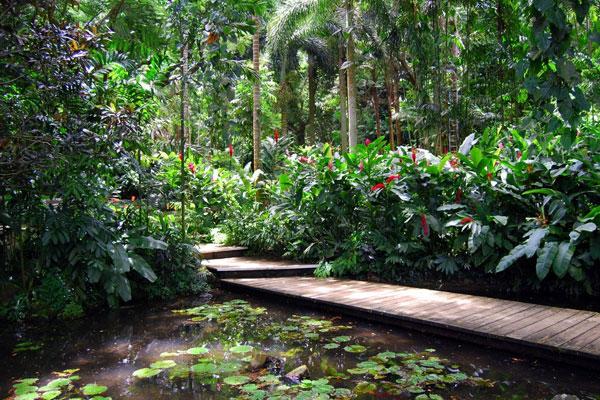 fiji-garden-of-the-sleeping-giant